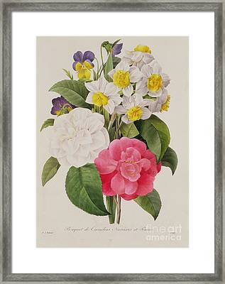 Camellias Narcissus And Pansies Framed Print