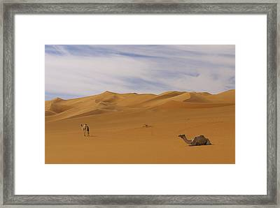 Camels Framed Print by Ivan Slosar