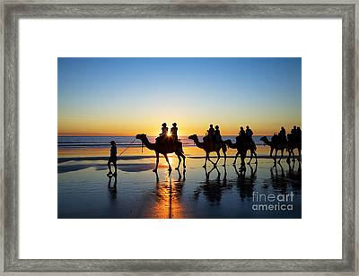 Camels On The Beach Broome Western Australia Framed Print by Colin and Linda McKie