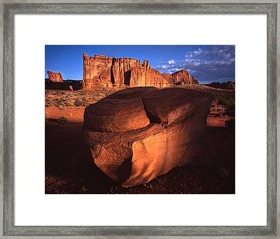 Cameo Appearance Framed Print by Ray Mathis