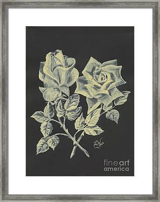Cameo Rose Framed Print by Carol Wisniewski