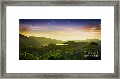Cameron Highlands Framed Print by Receb Parsel