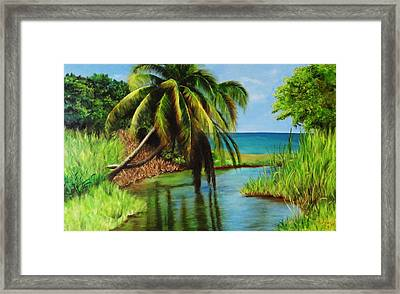 Camino Del Agua Framed Print by Migdalia Bahamundi