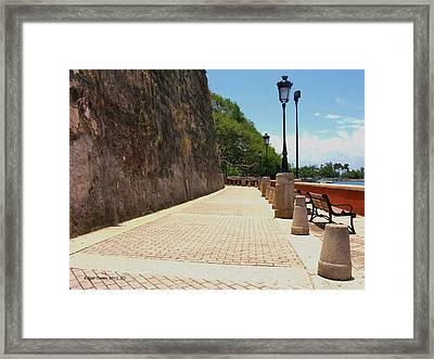Camino La Princesa Framed Print