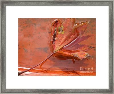 Camouflage Framed Print by Addie Hocynec