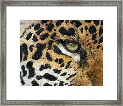 Camouflage Framed Print by Lucie Bilodeau
