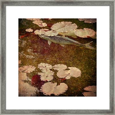 Framed Print featuring the photograph Camouflage by Sally Banfill