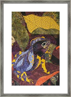 Camouflaged Forest Toad Framed Print by Lynda K Boardman