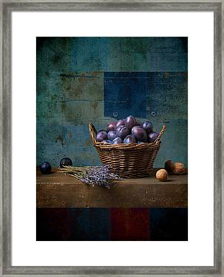 Campagnard - Rustic - S01obv Framed Print by Variance Collections