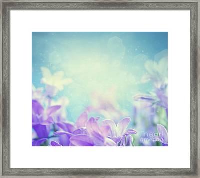 Campanula Floral Background Framed Print