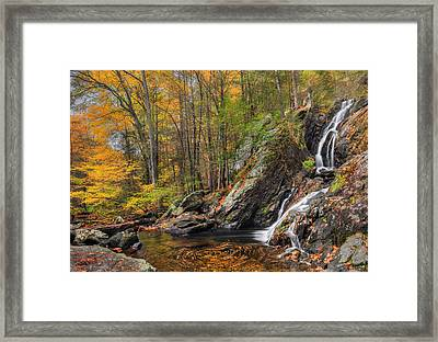 Campbell Falls Autumn Framed Print by Bill Wakeley