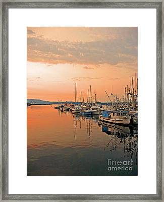 Campbell River Marina Framed Print by Nancy Harrison