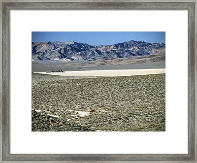 Framed Print featuring the photograph Camped At The End Of The Road by Joe Schofield