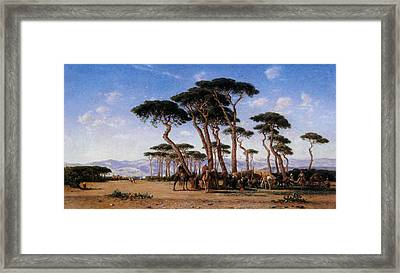 Campement Framed Print by Narcisse Berchere