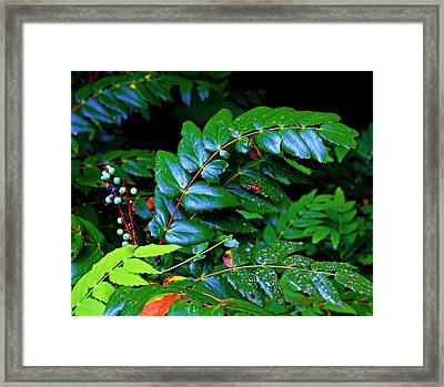 Campground Foliage Framed Print by Jeanette C Landstrom