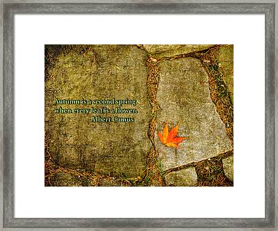 Camus Quote Autumn Is A Second Spring Framed Print by Marianne Campolongo