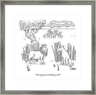 Can I Get You Something To Eat? Framed Print