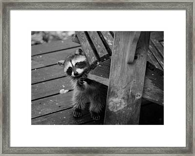 Can You Keep My Chair Here? Framed Print
