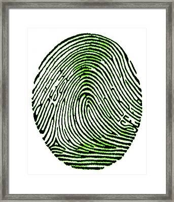 Can You See Yourself Framed Print