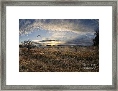 Canaan Valley In Morning Framed Print by Dan Friend