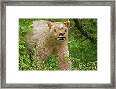 Canada, British Columbia, Princess Framed Print