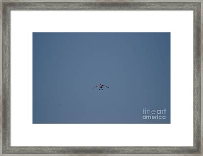 Framed Print featuring the photograph Canada Cleared For Landing by Mark McReynolds