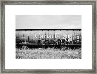 Canada Freight Grain Trucks On Canadian Pacific Railway Saskatchewan Canada Framed Print by Joe Fox