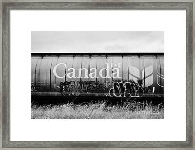 Canada Freight Grain Trucks With Tag Graffiti On Canadian Pacific Railway Saskatchewan Canada Framed Print by Joe Fox