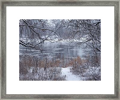 Canada Geese In The Winter II Framed Print