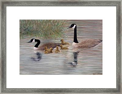 Framed Print featuring the painting Canada Goose Family by Kathleen McDermott