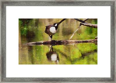 Canada Goose Reflection Framed Print