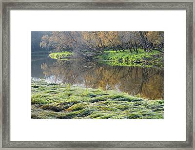 Canada Manitoba Autumn On Shore Framed Print by Jaynes Gallery