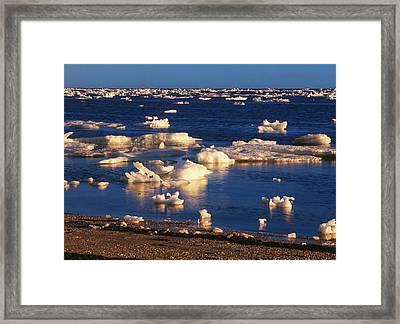 Canada, Manitoba, Churchill, Ice Floe Framed Print by Jaynes Gallery
