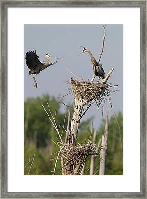 Canada, Quebec, St-thimotee Framed Print by Jaynes Gallery