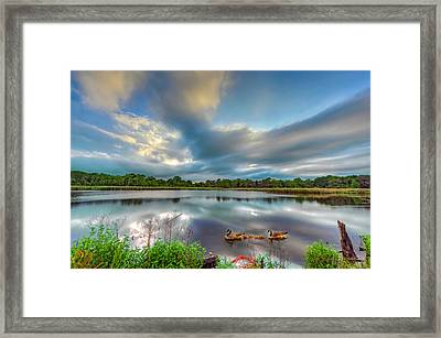 Canadian Geese On A Marylamd Pond Framed Print