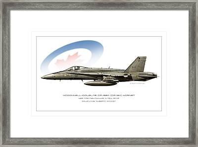 Canadian Hornet Framed Print by Peter Van Stigt