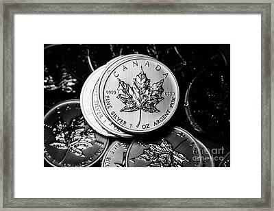 Canadian One Ounce Maple Leaf Silver Coins Framed Print by Joe Fox