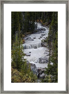 Canadian Rockies 2.0608 Framed Print by Stephen Parker