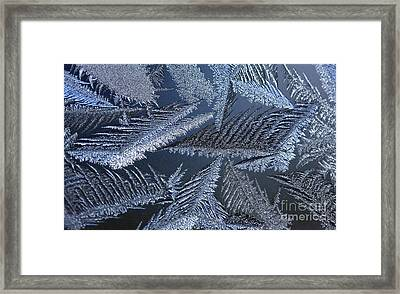 Canadian Winter Keeps On Giving - Polar Chill Framed Print by Inspired Nature Photography Fine Art Photography