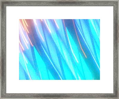 Canaille Framed Print by James Welch