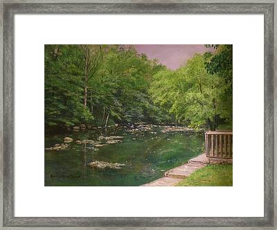 Canal At Prallsville Mills Framed Print by Aurelia Nieves-Callwood