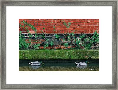 Canal Ducks Framed Print