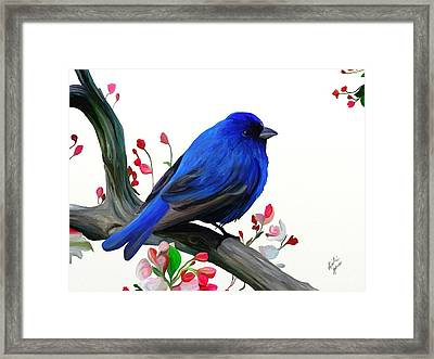 Canary Blue Morning Framed Print by Kristie Mercer