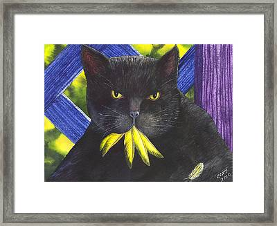 Canary? Framed Print by Catherine G McElroy