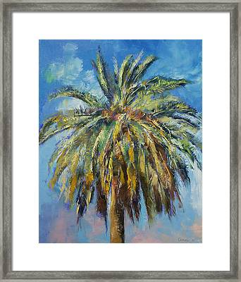 Canary Island Date Palm Framed Print by Michael Creese