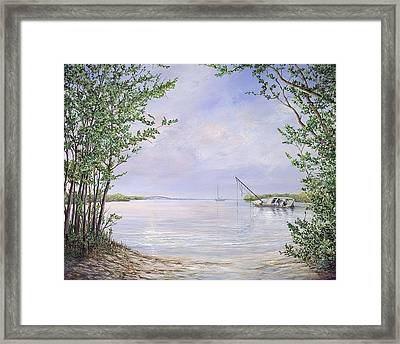 Canaveral Cove Framed Print by AnnaJo Vahle