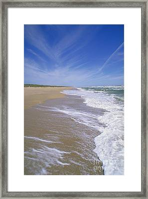 Canaveral National Seashore Framed Print by Millard H. Sharp