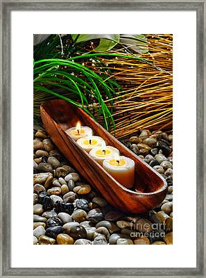 Candles Jungle  Framed Print