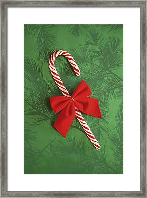 Candy Cane Framed Print by Colette Scharf