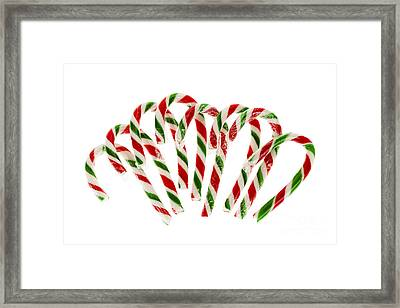 Candy Canes Framed Print by Elena Elisseeva